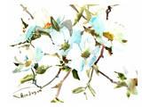 Dogwood Flowers Plakater af Suren Nersisyan