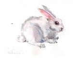 Bunny Prints by Suren Nersisyan