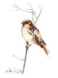 Sparrow 4 Affiches par Suren Nersisyan