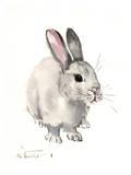 Bunny 3 Posters par Suren Nersisyan