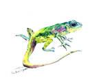 Lizard 3 Poster von Suren Nersisyan