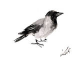 Hooded Crow 4 Prints by Suren Nersisyan