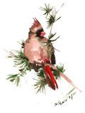 Female Cardinal Art by Suren Nersisyan