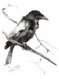 Raven 5 Affiche par Suren Nersisyan