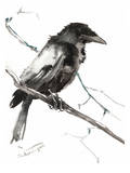 Raven 5 Print by Suren Nersisyan