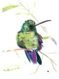 Hummingbird 11 Posters by Suren Nersisyan