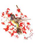 Hummingbird 19 Art by Suren Nersisyan