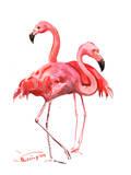 Flamingos Prints by Suren Nersisyan