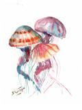 Jellyfish Art by Suren Nersisyan