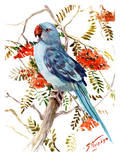 Blue Parakeet Print by Suren Nersisyan