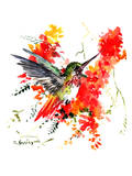 Hummingbird 18 Prints by Suren Nersisyan