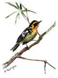 Yellow Warbler Affiches par Suren Nersisyan