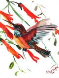 Hummingbird 9 Posters by Suren Nersisyan