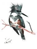 Martin-pêcheur d'Amérique Affiches par Suren Nersisyan