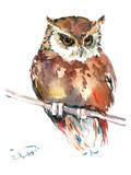 Owl 4 Prints by Suren Nersisyan