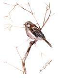 Field Sparrow 2 Posters par Suren Nersisyan