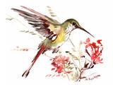 Hummingbird 13 Posters by Suren Nersisyan