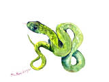 Florida Rough Green Snake 2 Art by Suren Nersisyan