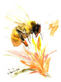 Bee Prints by Suren Nersisyan