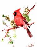 Red Cardinal Art by Suren Nersisyan