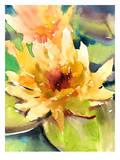 Lotus Yellow Plakater av Suren Nersisyan