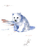 Polar Bear Prints by Suren Nersisyan