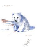 Polar Bear Prints by Suren Nersisyan
