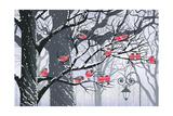Bullfinches on Trees in Winter City Print by  Milovelen