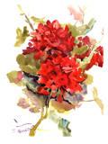 Geranium Prints by Suren Nersisyan