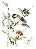 Mountain Chickadee Print by Suren Nersisyan