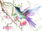 Hummingbird 15 Posters by Suren Nersisyan