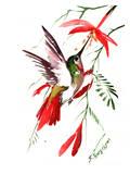 Hummingbird 8 Affiches par Suren Nersisyan
