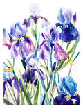 Irises Print by Suren Nersisyan