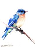 Bluebird 2 Posters by Suren Nersisyan
