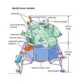 Apollo Lunar Module Print