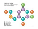 Caffeine Molecule Póster