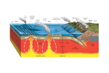 Volcanic Activity and the Earth's Tectonic Plates Posters
