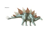 """Stegosaurus, """"Roof Lizard,"""" the Largest known Plated Dinosaur, Lived During Late Jurassic Posters"""
