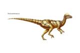 "Pachycephalosaurus, ""Thick-Headed Lizard,"" a Late Cretaceous Era Herbivore Prints"