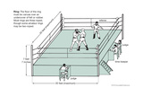 Boxing Ring Art