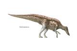 """Shantungosaurus, """"Shantung Lizard,"""" Late Cretaceous Dinosaur Print"""