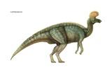 """Lambeosaurus, """"Lambe's Lizard,"""" Late Cretaceous Dinosaur Prints"""
