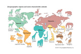 Characteristic Animals of Zoogeographic Regions Posters