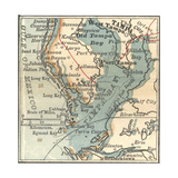 Map of Tampa, Florida Prints