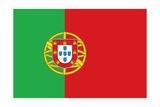 Flag of Portugal Art