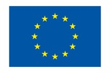 The Flag of the European Union Posters