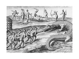 Timucua Indians Killing Alligators Posters