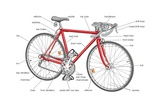 Basic Features of a Modern Road Bicycle Prints
