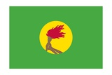 Historical Flag of Zaire (The Former Democratic Republic of the Congo), 1971 to 1997 Posters