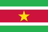 Flag of Suriname Posters